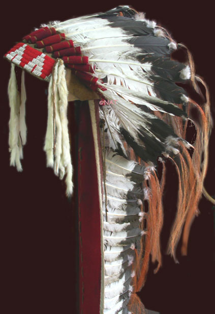 Lakota trailer headdress